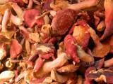 武夷山野生红菇