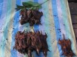 武夷山腊老鼠肉 老鼠肉 熏老鼠肉