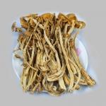 武夷山特产茶树菇